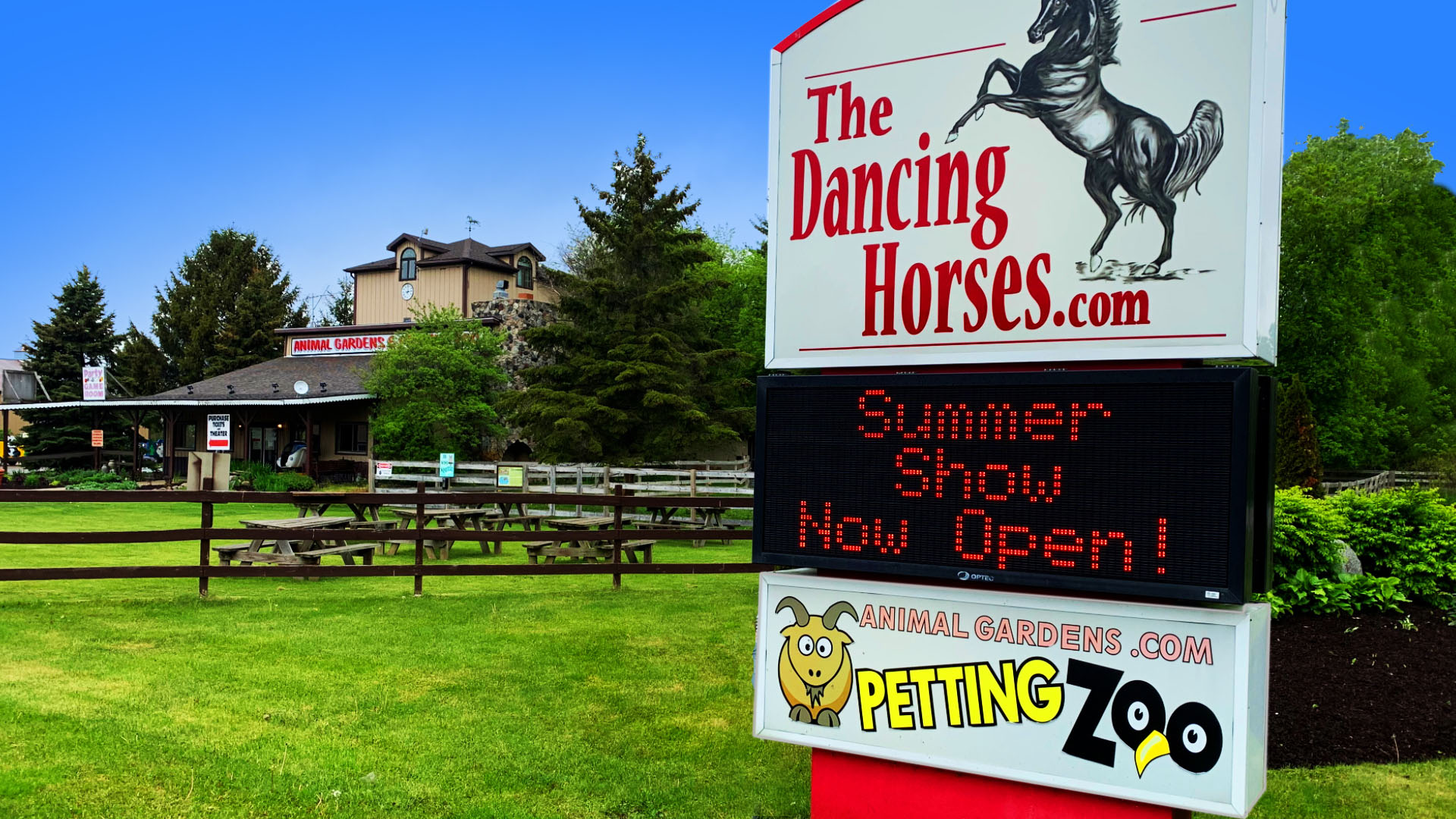 Dancing Horses Show and Petting Zoo